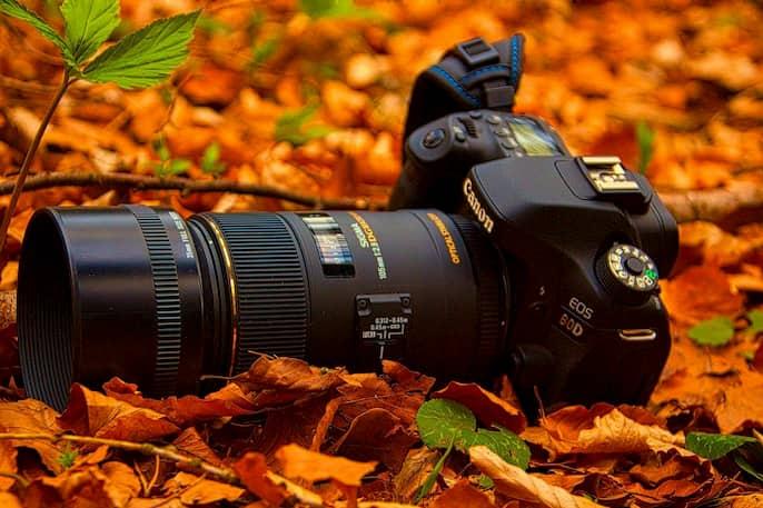 Qué es una cámara réflex digital